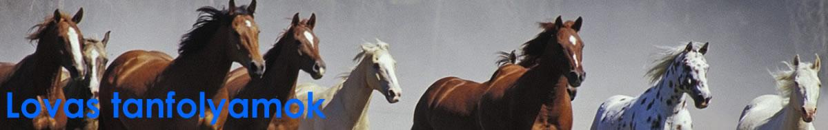 JELENTKEZZ MOST! 2018. MÁJUS OKJ-s lovastúra vezető tanfolyam és további lovas tanfolyamok Budapesten és országosan, Hétvégi oktatás; Havi részletfizetés; A külföldi munkavállalást segítő Europass bizonyítvány... OKJ-s lovász, OKJ-s lóápoló é